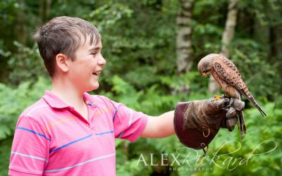 Falconry Day – Children's Photographer, West Sussex