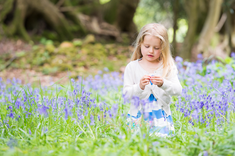 Little girl photographed sitting in the bluebells in West Sussex woods