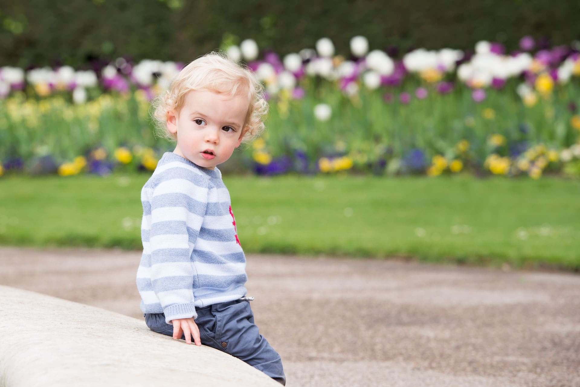 Young boy sitting on a wall, tulips behind him