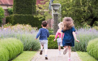 Photography course for Teenagers at Borde Hill Gardens