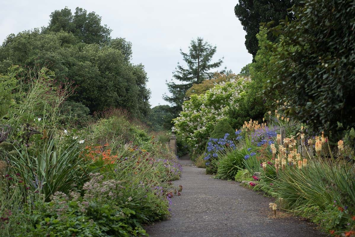 Path lined with flowers at Borde Hill Garden, Haywards Heath