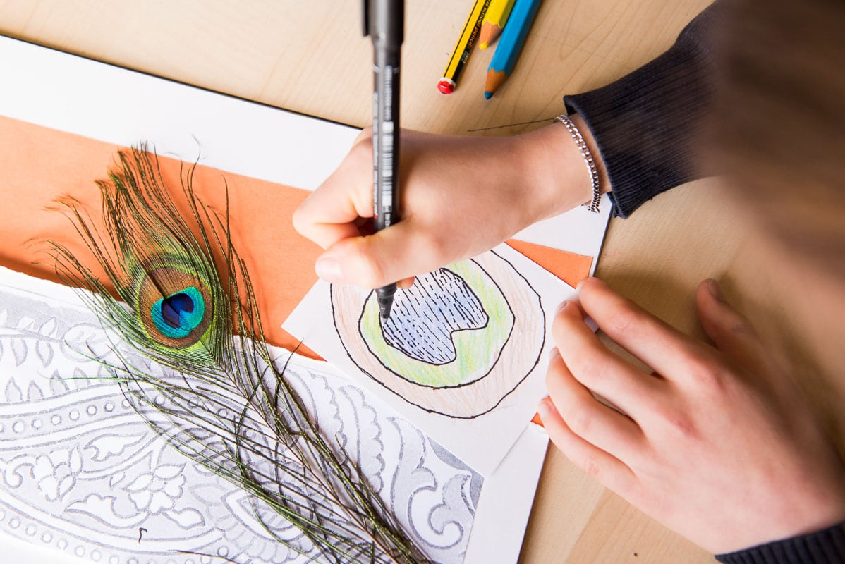 Close up of a child drawing a peacock feather
