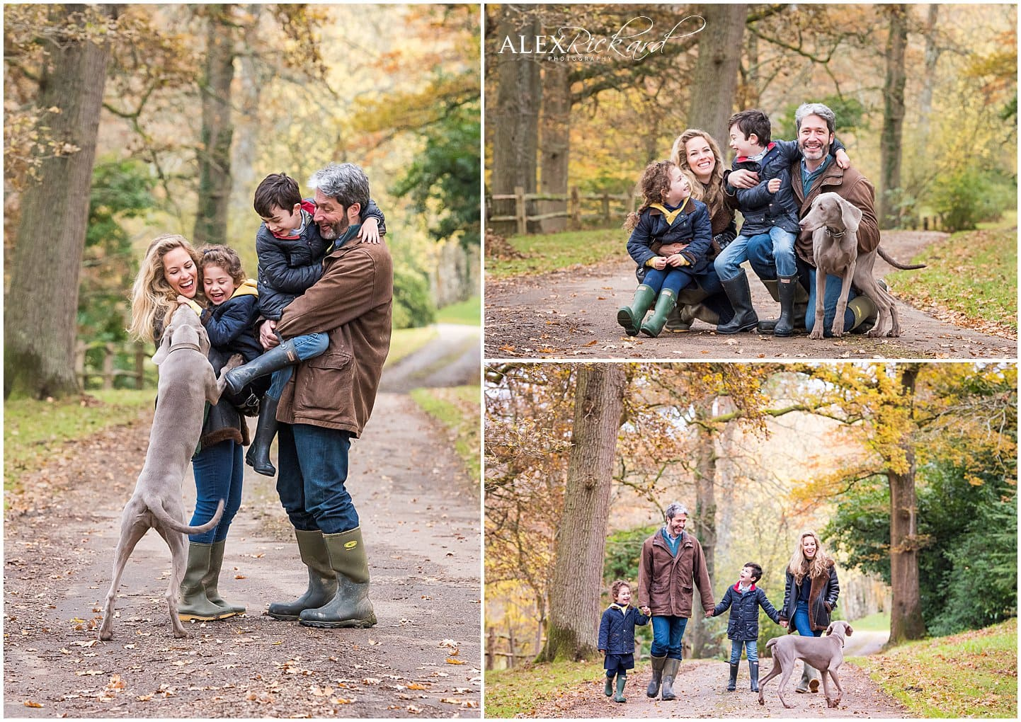 Montage of 3 images of a family outside with their dog during autumn